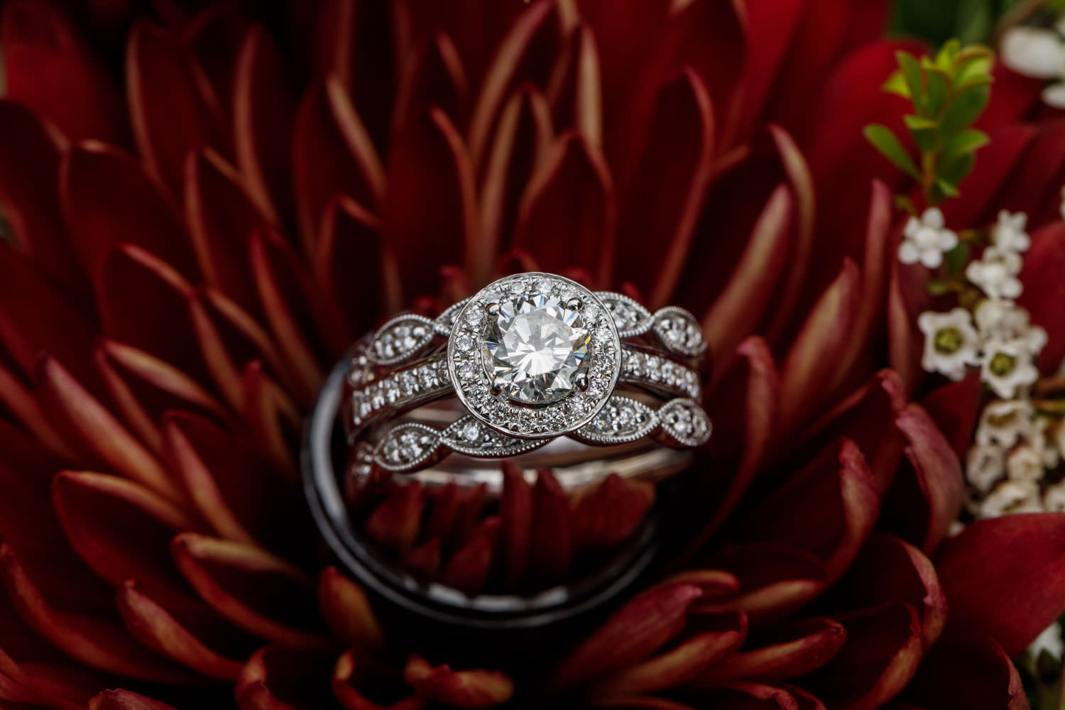 Close up photo of engagement ring placed in flower