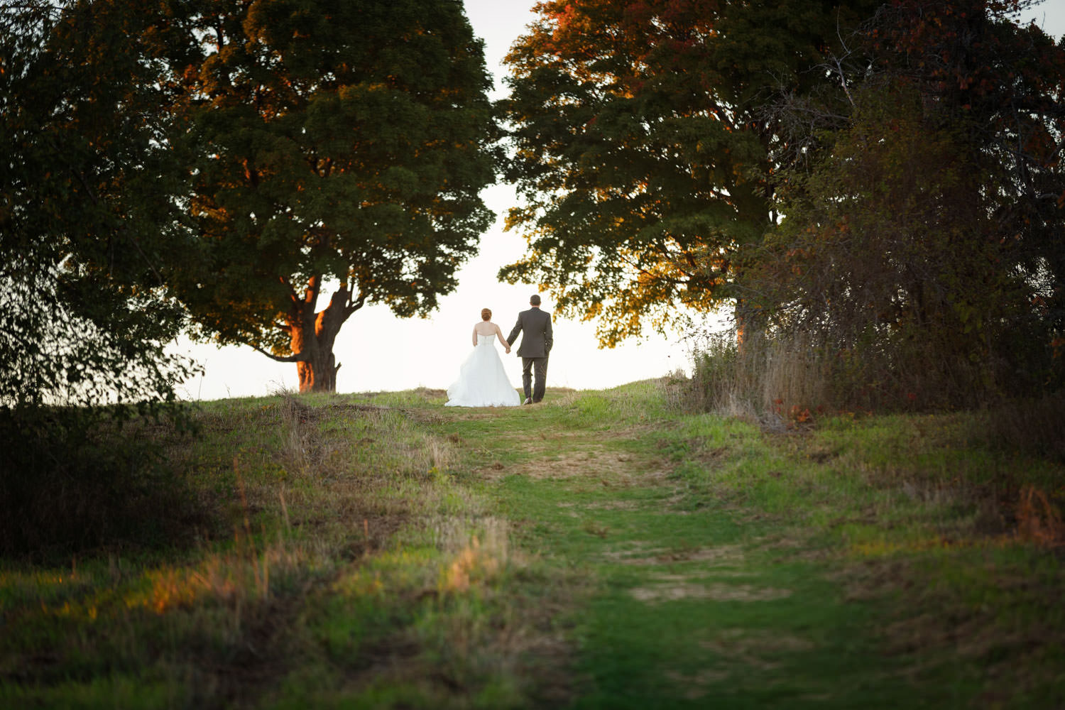 Bride and Groom walking away up trail between two trees with skyline behind them