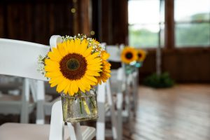 Sunflower on table setting