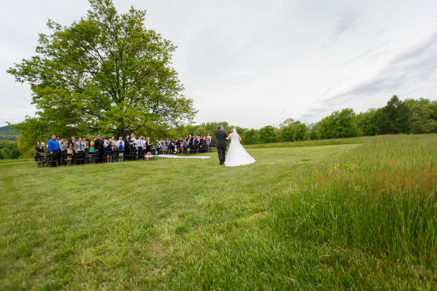 Wide angle photo of ceremony by tree at the red barn at hampshire college