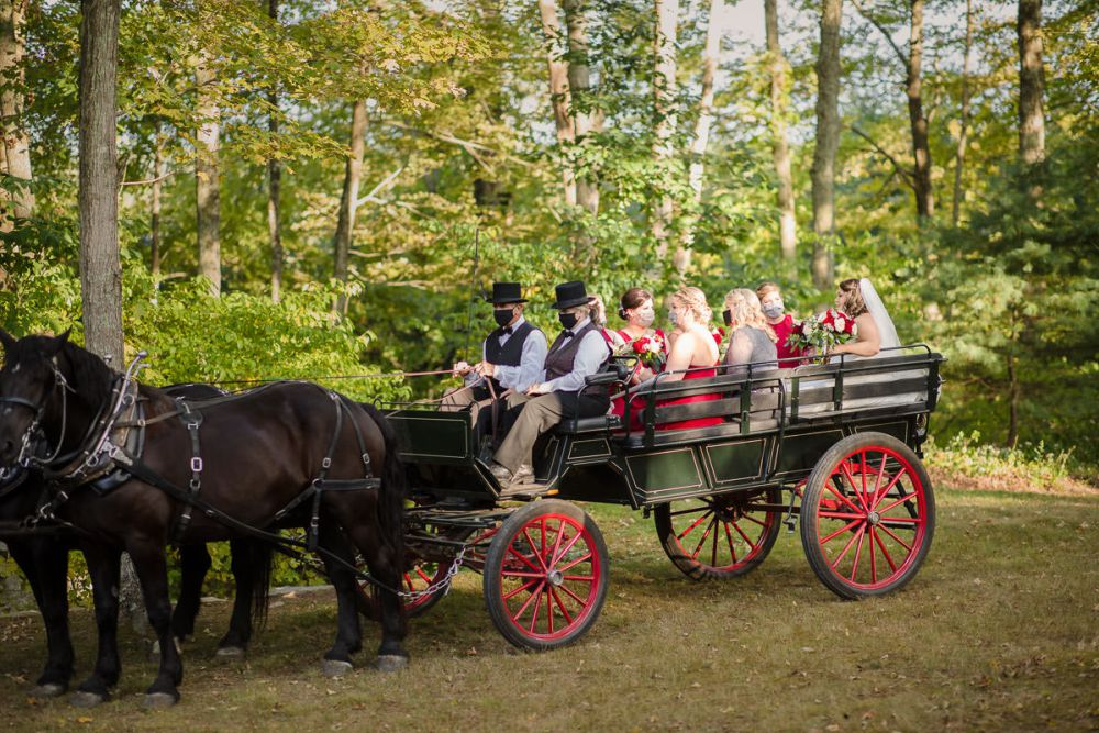 Horse Carriage ride with bridal party at Wrights Mill Farm