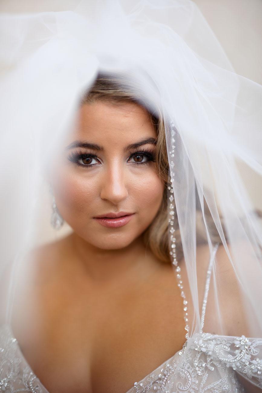 Veil portrait of bride.